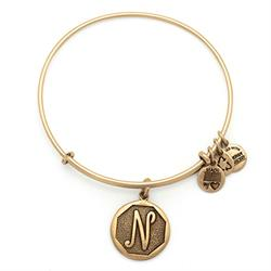 N Initial Bangle in Rafaelian Gold