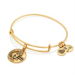 Aquarius Disc Bangle in Rafaelian Gold Finish
