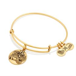Alex and Ani Capricorn Disc Bangle in Rafaelian Gold Finish