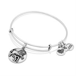 Alex and Ani Leo Disc Bangle in Rafaelian Silver Finish