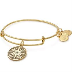 Alex and Ani Healing Love Colour Infusion Bangle in Shiny Gold