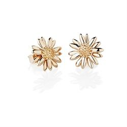 Rose Gold Vintage 10mm Daisy Studs