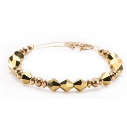 Golden Lustre Wonder Bangle in Rafaelian Gold Finish