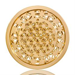 Golden Maze Gold Coin 33mm