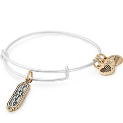 Alex and Ani Silver and Gold Family Bangle