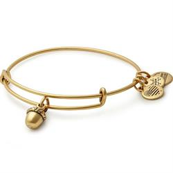 Unexpected Blessing Bangle Rafaelian Gold