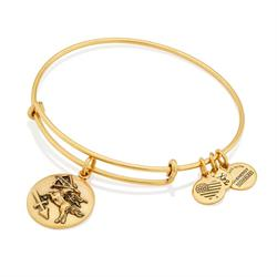 Alex and Ani Sagittarius Disc Bangle in Rafaelian Gold Finish