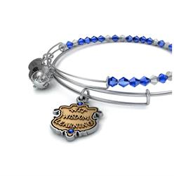 Alex and Ani Harry Potter Ravenclaw Set of 2 Bangles