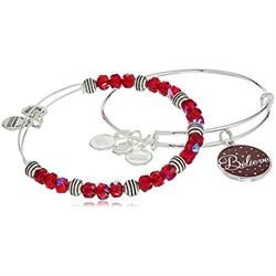 Believe Wine Colour Infusion bangle Set in Shiny Silver