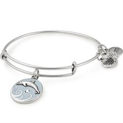 Dolphin Colour Infusion Bangle in Rafaelian Silver