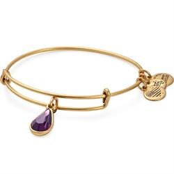 February Amethyst Birthstone in Rafaelian Gold Finish