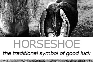 Horseshoe Jewellery
