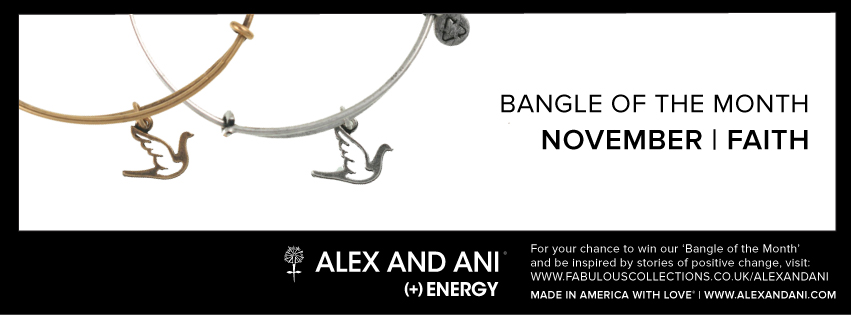 Alex and Ani Bangle of the month November competition